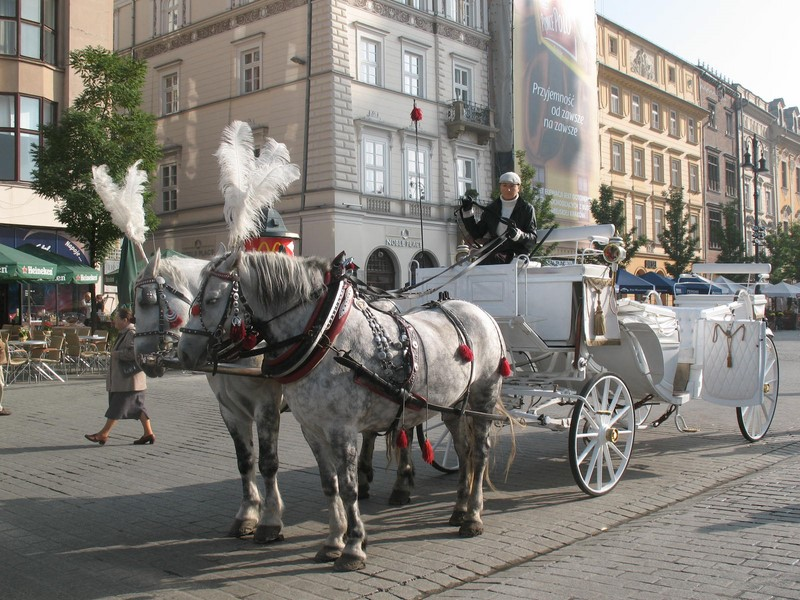 19 Poľsko Osvienčim - Krakov 5